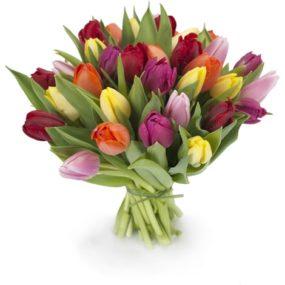Tulpenmix boeket middel
